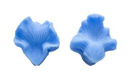 Вайнер Серединка орхідеї Катлея