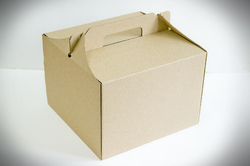 Коробка 255 х 255 х 185 мм (бурая)