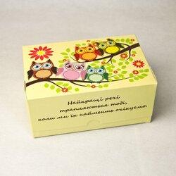 """Коробка-контейнер для тортов, чизкейков, пирожных  """"Совы весна"""" 180*120*80  мм"""