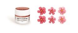Краситель сухой жирорастворимый для шоколада Украса Вишневый 5г