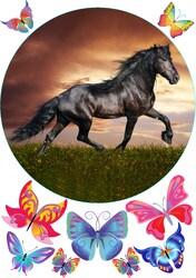 Картинка Животные №6