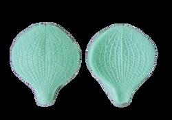 Вайнер лепесток Орхидеи Vanda MAX